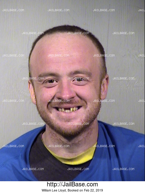 William Lee Lloyd mugshot picture
