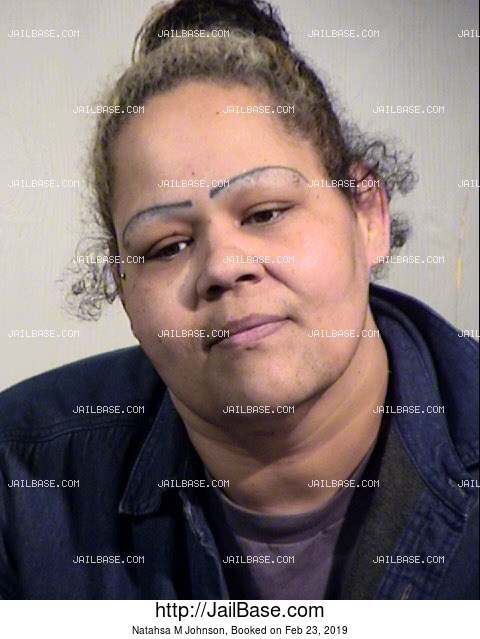 Natahsa M Johnson mugshot picture