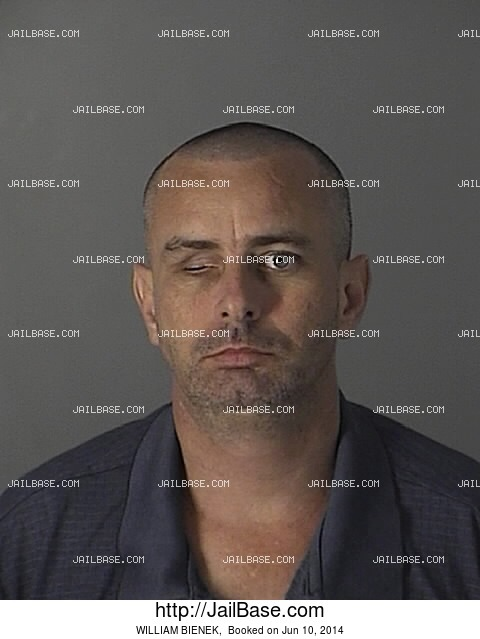 WILLIAM BIENEK mugshot picture
